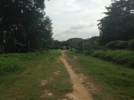 A stretch of the railway near the Bukit Timah Station