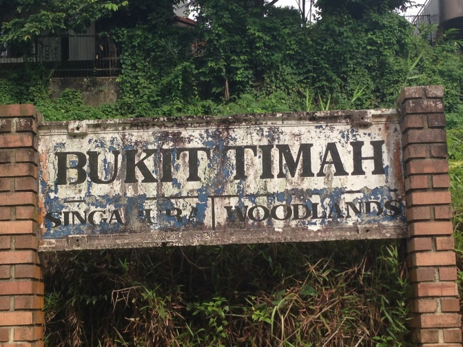 The Lion City Bucket List: Walking the Bukit Timah Railway Line